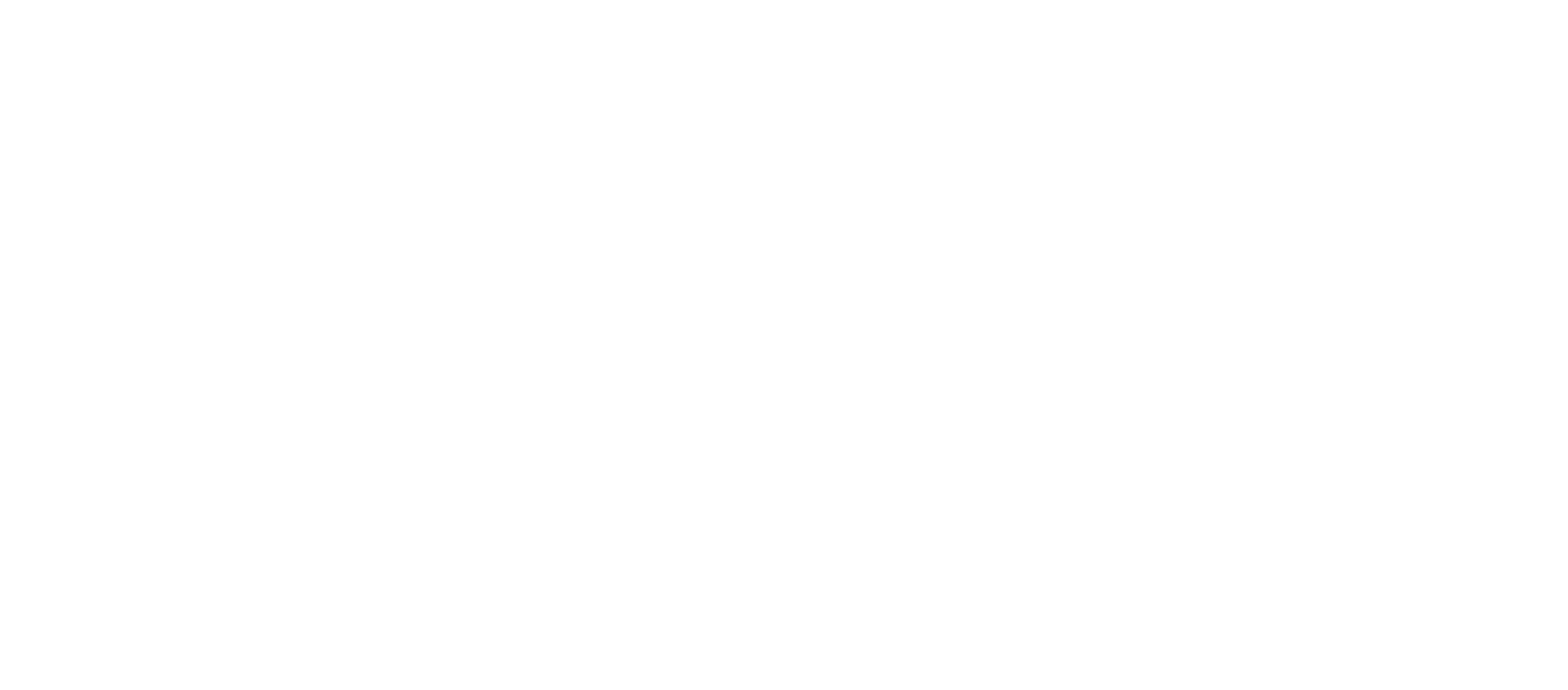 SKOUT-Cybersecurity-W@Large